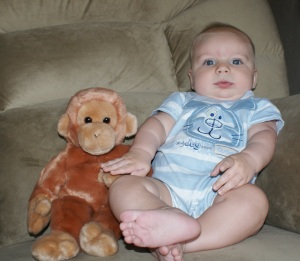 4 month monkey picture