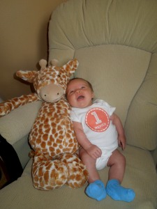 bo 1 month giraffe